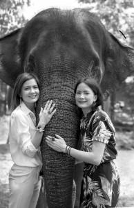 NACH Sisters Elephant_light